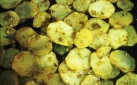 Patatas al Horno con Salsa de Orégano y Curry